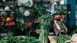 stockage aliment, rangement nourriture, entreposer, Espace Equipement